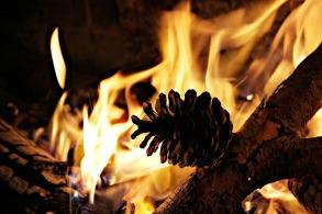 fire-605585_1280.jpg